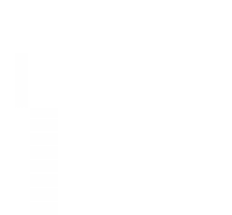 box Nerf Elite Echo CS-10 (E9533)